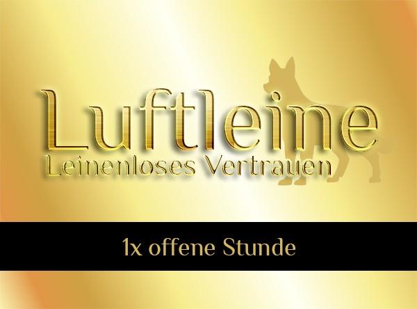 1x Offene Stunde